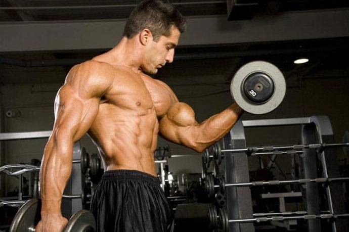 How To Increase The Bicep Muscles