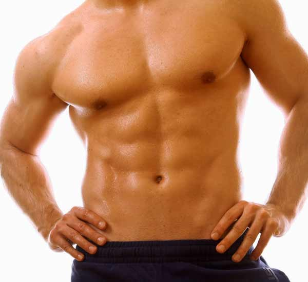 Abdomen Muscles – Organs, Function, Conditions & Exercises | MuscleSeek