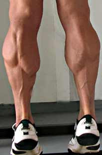 Calf Muscles – Pathology, Strain, Diagnosis, Treatment ...
